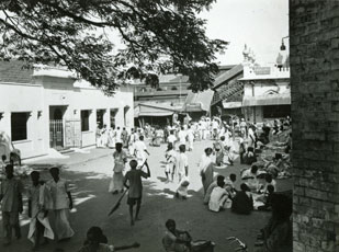 [Madras Meat Market]