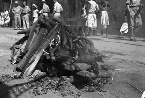 [Cremation at burning ghat]