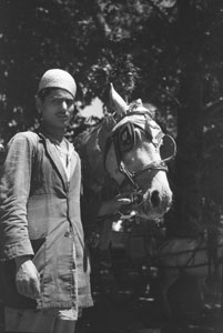 [Indian with horse]