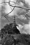 [Pagoda in Calcutta]